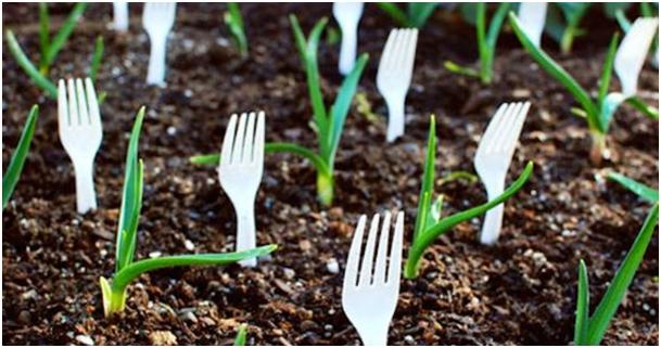 plastic-forks-garden