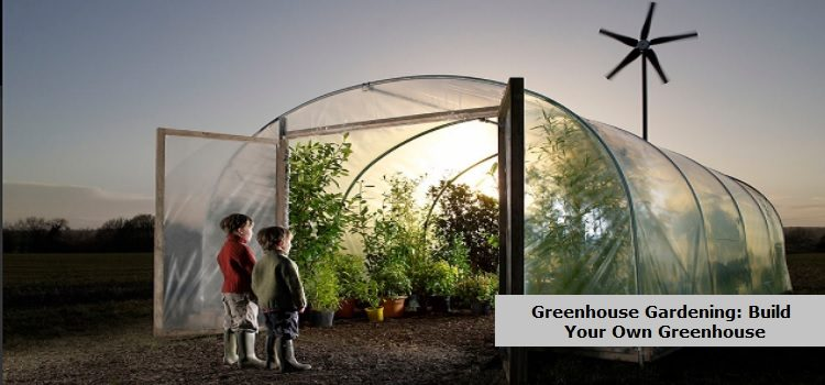Building Own Greenhouse