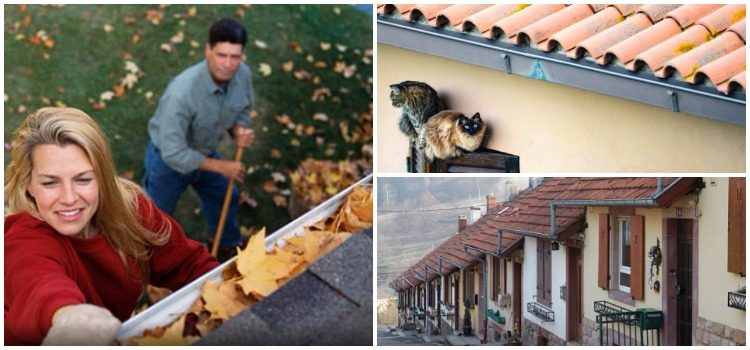 best Homes Gutters