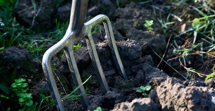 A gardening fork