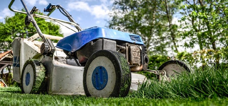 make Lawn ready