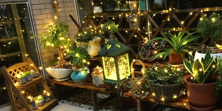 Twinkling fairy garden