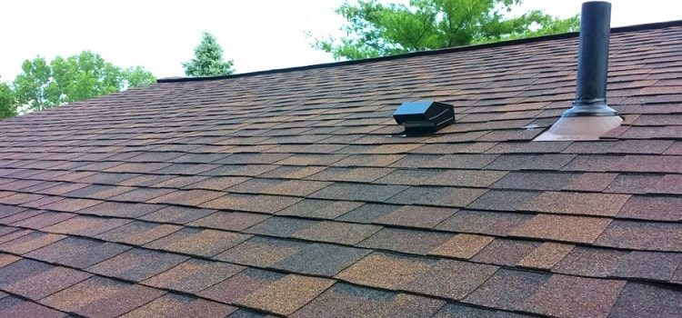 layer of shingles