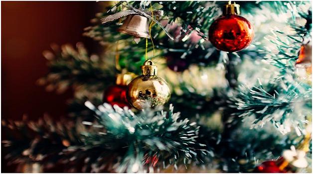 get-a-christmas-tree