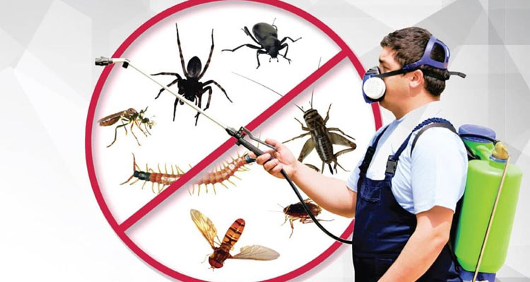 Protect Home From Pests