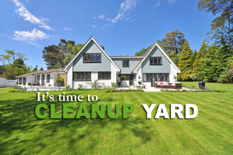 how to cleanup my yard