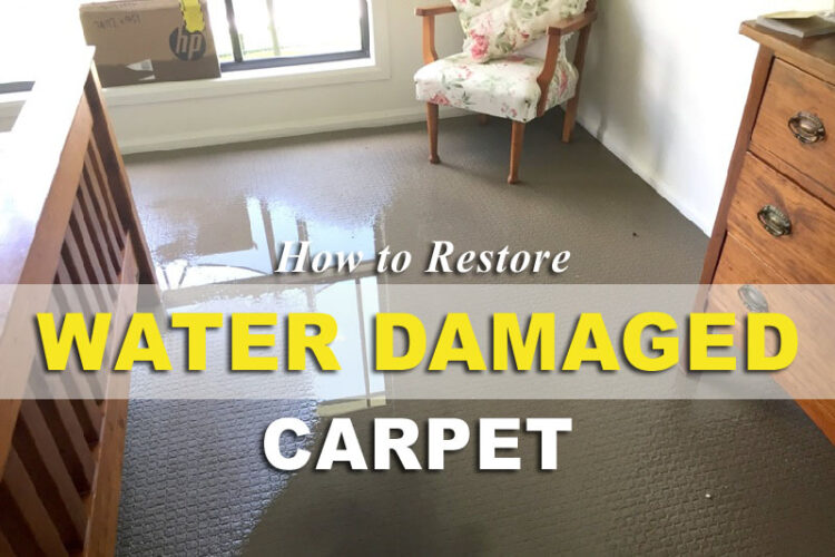 how to restore water damaged carpet